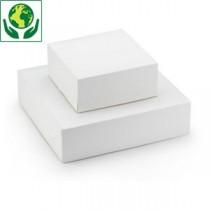 Boite Carton blanche 18x18x5