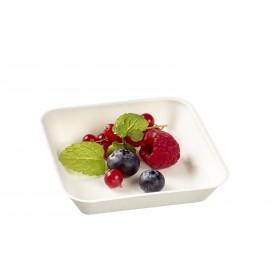 Assiette Kanopée 10x10 Blanc Bio Solia